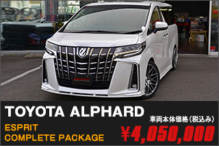 TOYOTA ALPHARD ESPRIT COMPLETE PACKAGE